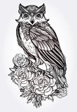 Hand drawn Owl with roses vintage style. Vector Stock Photo