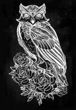 Hand drawn Owl with roses vintage style. Vector Royalty Free Stock Image