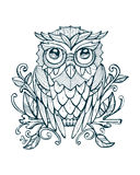 Hand drawn owl Royalty Free Stock Images