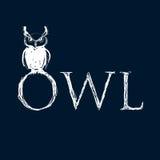Hand drawn owl Stock Photo