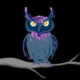 Hand drawn owl Stock Image