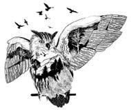Hand drawn owl, wildlife concept Stock Photos