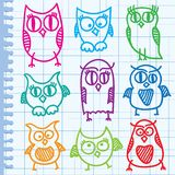 Hand drawn owls Stock Image