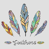 Hand Drawn Painted Feathers Set Stock Photo