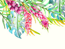 Hand drawn painted pattern. Vector illustration Royalty Free Stock Photos