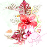 Hand drawn painted pattern. Vector illustration Stock Photo