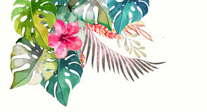 Hand drawn painted pattern. Vector illustration Stock Photos