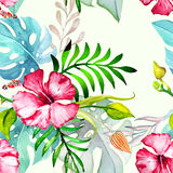 Hand drawn painted seamless pattern. Vector illustration Stock Photos