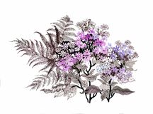 Hand drawn painting with colorful flowers and branches of fern on white background. Hand drawn painting with colorful flowers and branches of fern on white Royalty Free Stock Photography