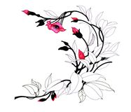 Hand drawn painting with colorful flowers on white background. Hand drawn painting with colorful flowers on white background Stock Photography