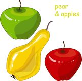 Hand drawn painting red and green apples, yellow pear on white Stock Images