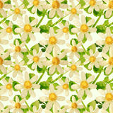 Hand-drawn with paints chamomile and leaves on green background, seamless pattern Royalty Free Stock Photo