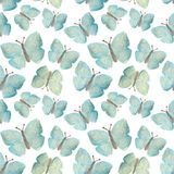 Hand-drawn with paints pearly blue butterflies on white background, seamless pattern Stock Photos