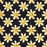 Hand-drawn with paints pearly chamomile on dark background, seamless pattern Royalty Free Stock Photos
