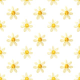 Hand-drawn with paints pearly chamomile on white background, seamless pattern Stock Image