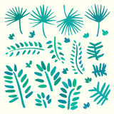 Hand drawn palm tree leaves set Royalty Free Stock Photography
