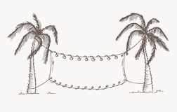 Hand drawn palm trees. Vector, editable image. Stock Photography