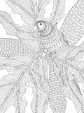 Hand Drawn Parrot Adult Colouring Stock Images
