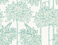 Hand drawn pattern with chrysanthemum. Stock Photos