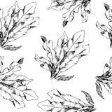 Hand Drawn pattern with flowers and herbs vintage floral elements. Hand Drawn pattern with flowers and herbs vintage floral elements, wallpaper for girl Royalty Free Stock Image