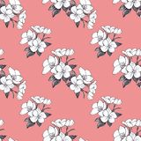 Hand drawn pattern seamless apple flowers on coral background. vector illustration