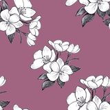 Hand drawn pattern seamless apple flowers on dark pink  background. stock illustration