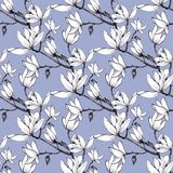 Hand drawn pattern seamless magnolia flowers on blue  background. stock illustration