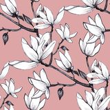 Hand drawn pattern seamless magnolia flowers on pink background. royalty free illustration