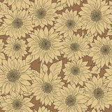 Hand drawn pattern sunflowers background. Flower beige brown. Packaging products. Hand drawn pattern of sunflowers background. Flower sunflower beige and brown Stock Image