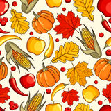 Hand drawn pattern Thanksgiving Day Stock Images