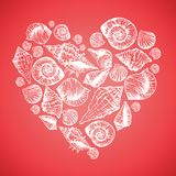 Hand drawn pattern with various seashells in the Royalty Free Stock Photography