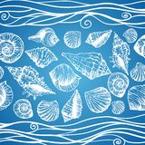 Hand drawn pattern with various seashells Stock Image