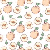 Hand drawn peach with slice seamless pattern Royalty Free Stock Images
