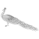 Hand drawn Peacock for anti stress Coloring Page with high details, isolated on white background Stock Photography