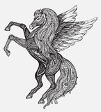 Hand drawn Pegasus mythological winged horse. Victorian motif, t Stock Photography