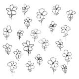 Hand drawn pen and ink style illustration of flowers Stock Photos