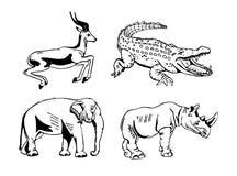 Hand-drawn pencil graphics, african animals set. Black and white logo, sign, emblem, symbol. Stamp, seal. Simple illustration. Sketch Stock Photos
