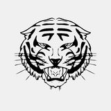Hand-drawn pencil graphics, tiger head. Engraving, stencil style. Black and white logo, sign, emblem, symbol. Stamp Royalty Free Stock Photo