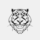 Hand-drawn pencil graphics, tiger head. Engraving, stencil style. Black and white logo, sign, emblem, symbol. Stamp Stock Images