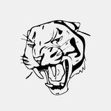 Hand-drawn pencil graphics, tiger head. Engraving, stencil style. Black and white logo, sign, emblem, symbol. Stamp Stock Photos
