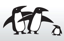 Hand drawn penguin family 3 Stock Image