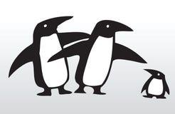Hand drawn penguin family 3 Stock Image