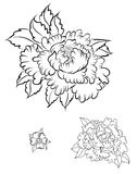 Hand drawn Peony flower.Chinese flower vector tattoo.Doodle art peony tattoo. Stock Photos