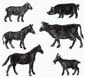 Hand drawn pets Stock Photos