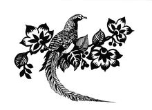Hand drawn pheasant in the grass and flowers, isolated on white background Stock Photography
