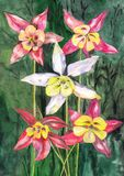 Hand drawn picture flowers. Hand-drawn pencils and inks painting flowers Stock Illustration