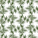 Hand drawn pine branch seamless pattern. Green Stock Photo