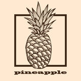 Hand drawn pineapple Royalty Free Stock Photo