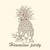 Hand-drawn pineapple illustration Royalty Free Stock Photography