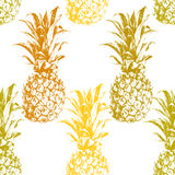 Hand drawn pineapple seamless Royalty Free Stock Photo